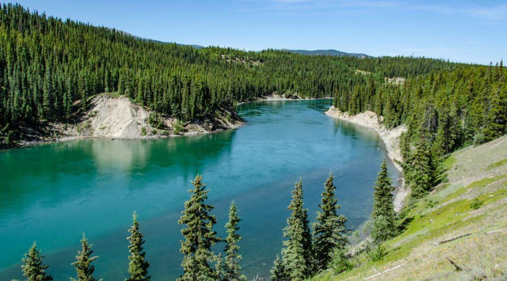 Der Yukon River kurz vor dem Miles Canyon